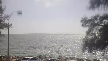 Venice Jetties South Surf Report & Forecast - Live Surf ...